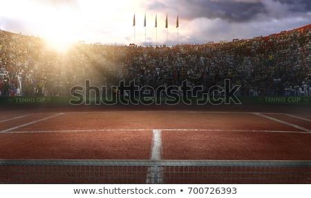 テニス · 赤 · 粘土 · フィールド · ポール · 純 - ストックフォト © experimental