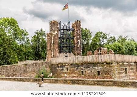 Flag of Limburg on brick wall Stock photo © creisinger