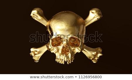 Dourado crânio sólido ouro 3d render metal Foto stock © AlienCat