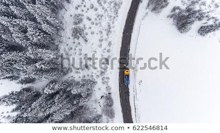 kar · karayolu · Wyoming · eyaletler · arası · görünürlük - stok fotoğraf © aikon