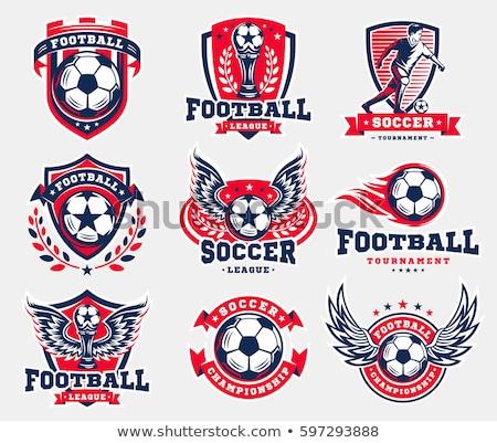 Laurier krans banner voetbal voetbal voetbal Stockfoto © squarelogo