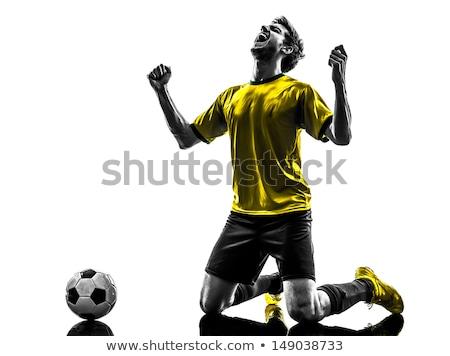 2013 sport fű fény futball jókedv Stock fotó © tashatuvango