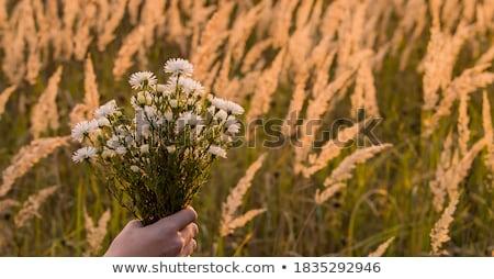 Fiatal lány virágcsokor virágok üdvözlőlap lány mosoly Stock fotó © balasoiu