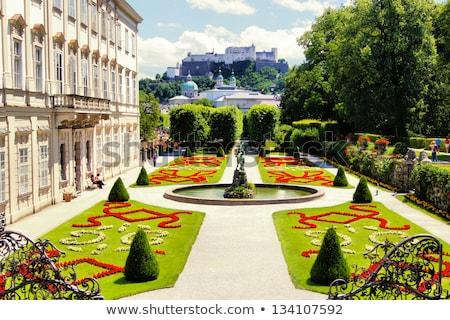 Palota kertek Ausztria központi Európa fű Stock fotó © frank11