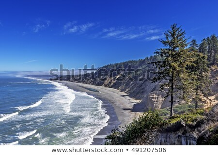 View from Patricks point state park, California. Stock photo © snyfer