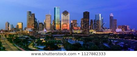 Houston sziluett iroda város terv híd Stock fotó © compuinfoto