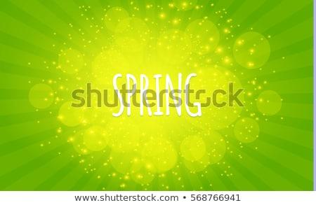 グランジ · 抽象的な · タンポポ · 花 · ソフト · フォーカス - ストックフォト © stevanovicigor