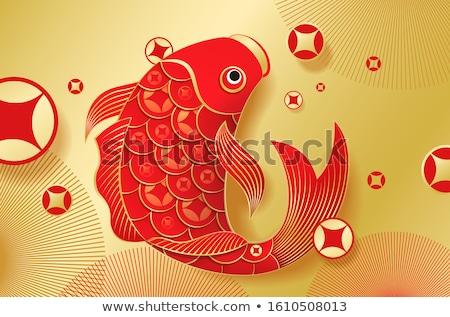 Altın balık altın sazan yalıtılmış akvaryum Stok fotoğraf © mady70