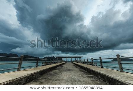 roll boat in water silhouette   Stock photo © yanukit