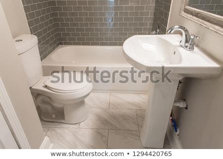 Küçük banyo siyah mimari banyo beyaz Stok fotoğraf © Sarkao