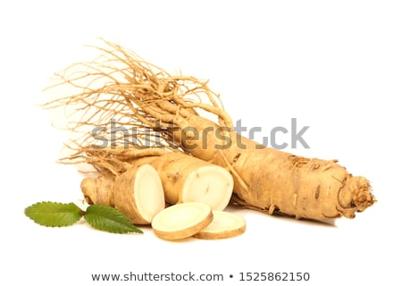 ginseng roots stock photo © joannawnuk
