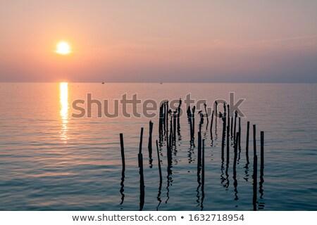 飛行 · アイルランド · 太陽 · 水 - ストックフォト © morrbyte