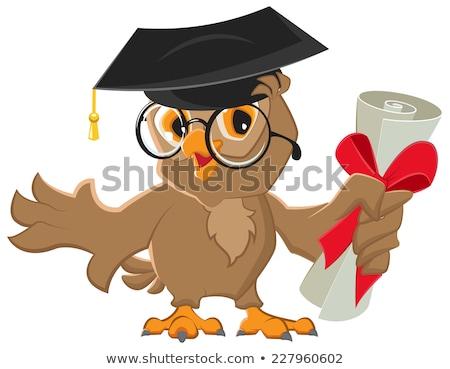 rajz · bölcs · bagoly · érettségi · sapka · diploma - stock fotó © orensila