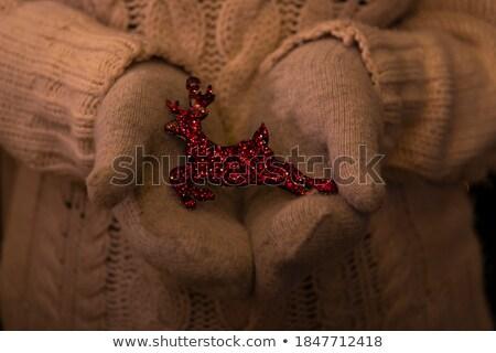 Christmas woman holding woolen sweater with christmas deers Stock photo © HASLOO