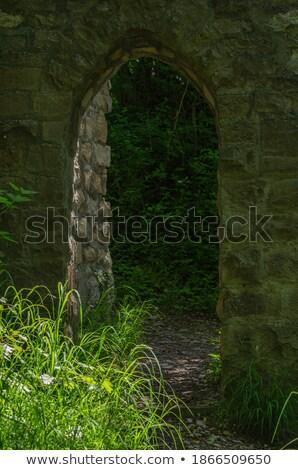 Sunlit ruin Stock photo © olandsfokus