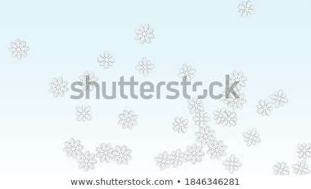 To give a christmass snow party. Stock photo © boroda