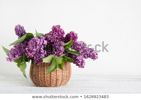 Lilac in a basket Stock photo © -Baks-