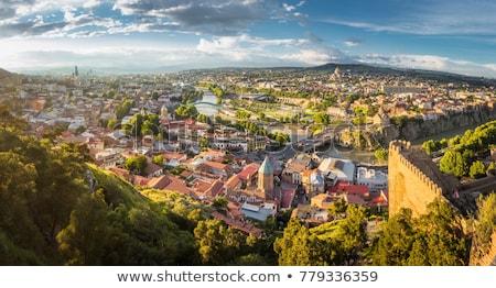 Panorama Géorgie panoramique vue crépuscule bâtiment Photo stock © joyr