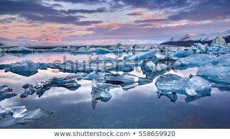 geleira · Islândia · brilhante · verão · noite · paisagem - foto stock © elxeneize