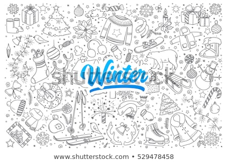 Vector Winter Hand Drawn Lettering Stock photo © lissantee