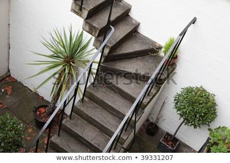 belső · udvar · nő · fehér · kalap · udvar · ház - stock fotó © ndjohnston