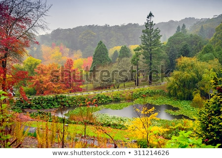 Adelaide colinas panorama vista granja campos Foto stock © MichaelVorobiev