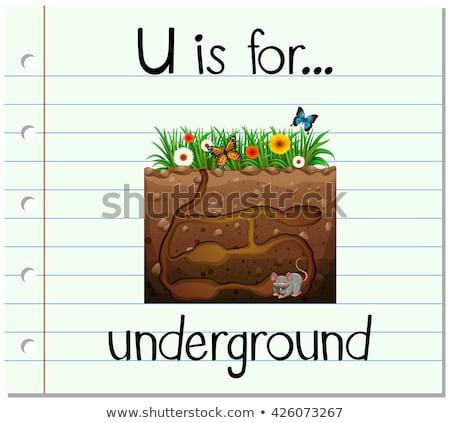 Mektup yeraltı örnek arka plan eğitim kart Stok fotoğraf © bluering