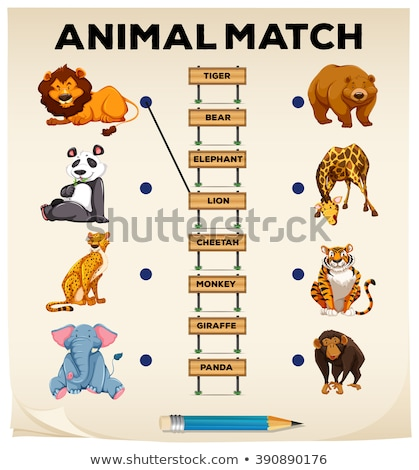 Word puzzle game with wild animals Stock photo © bluering