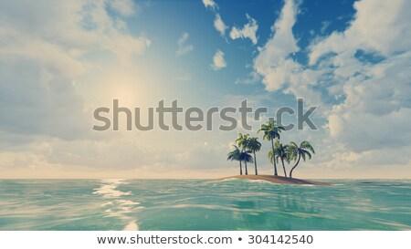 Palmen klein oceaan eiland tropisch eiland weinig Stockfoto © maxmitzu