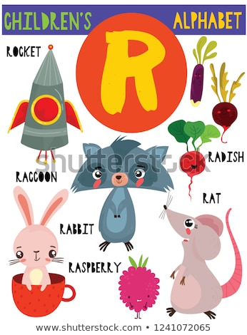 Flashcard letter R is for radish Stock photo © bluering
