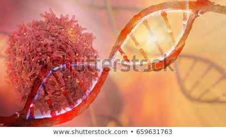 Cancer DNA Concept Stock photo © Lightsource