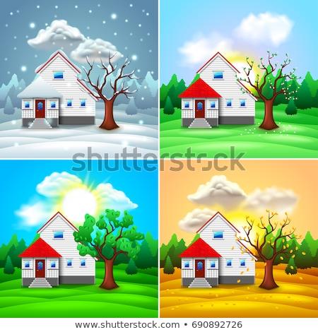 Domu cztery pory roku ilustracja wiosną drewna słońce Zdjęcia stock © adrenalina