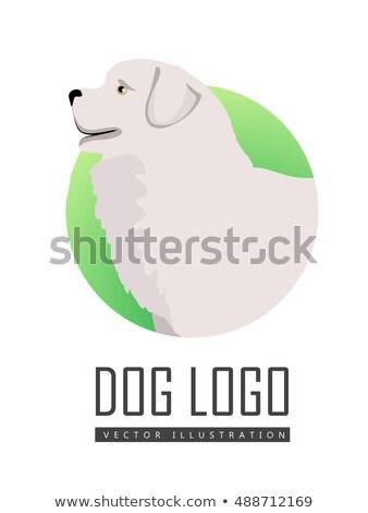 Hond logo vector herdershond ras geïsoleerd Stockfoto © robuart