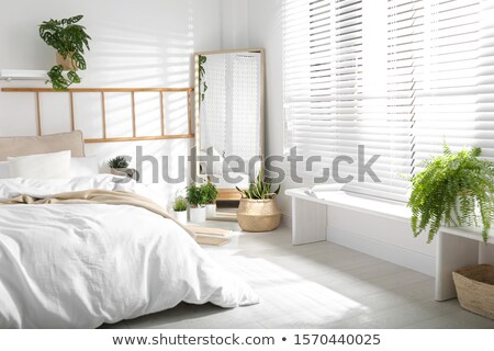 agradable · decorado · Windows · cabaña · pared · pintura - foto stock © feverpitch