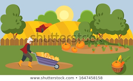 Earning income from agricultural activity Stock photo © stevanovicigor