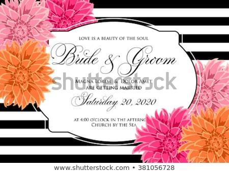 Dalya krizantem düğün şablon düğün davetiyesi kurtarmak Stok fotoğraf © Krisdog