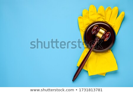 Home Law Stock photo © Lightsource