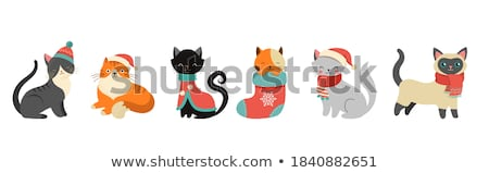 漫画 · クリスマス · ペット · 猫 · 着用 - ストックフォト © krisdog