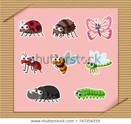 Sticker set with many types of insects Stock photo © bluering