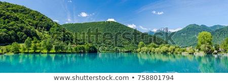 Hegyek Szlovénia gyönyörű vadon tájkép park Stock fotó © stevanovicigor