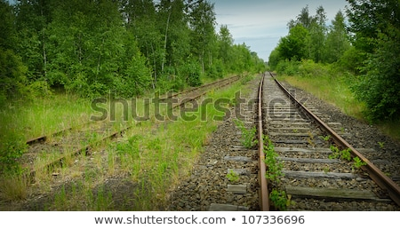old abandoned railway track disappearing into woods stock photo © popaukropa