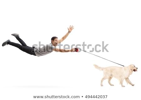 Dog Pulling Man Stock photo © blamb