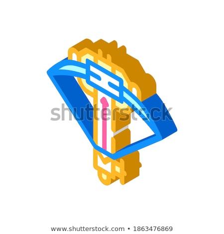 Isométrica ícone isolado cor vetor símbolo Foto stock © sidmay
