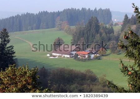 Aerial view of majestic landmark with green field, Germany Stock photo © LightFieldStudios