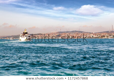 golden horn bay of istanbul stock photo © givaga
