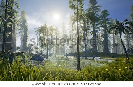 различный динозавр лес иллюстрация фон смешные Сток-фото © colematt