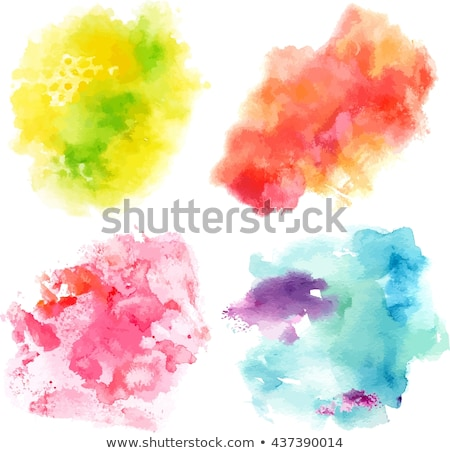 Four frame design with colorful flowers Stock photo © colematt