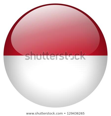 Ikon Indonézia zászló illusztráció terv háttér Stock fotó © colematt