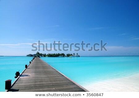Boot idyllisch zee strand groene palmbladeren Stockfoto © AndreyPopov