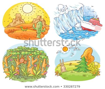 Conjunto natureza paisagem diferente clima ilustração Foto stock © bluering